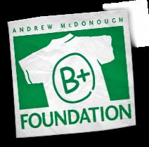 b+ foundation
